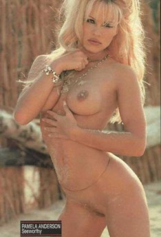 pam anderson having sex № 76225