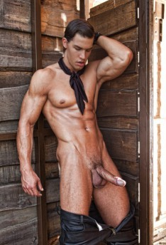 Kris Evans