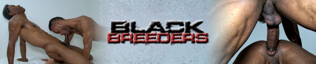 Black Breeders