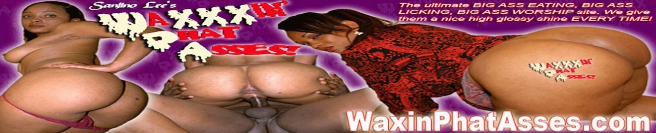 Waxin Phat Asses