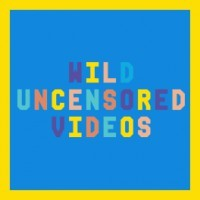 Wild Uncensored Videos