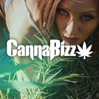 Canna Bizz