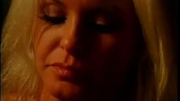 Porn Vixens 11 - Scene 8
