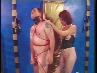 Pornohub paradise hotel nakenscener