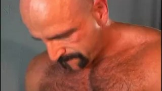 Bear Fuzz - Scene 2