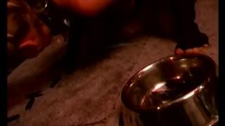 Abrichtung Und Gehorsam - Scene 3 porno