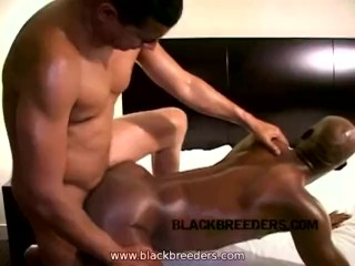 Troy's Hungry for Bareback Black Cock