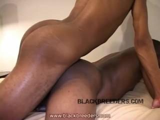 Flip Da Fuck Out 5