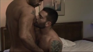 Muscle Bear Motel  bear muscle hairy gloryholes