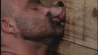 Muscle Bear Motel hairy muscle bear gloryholes