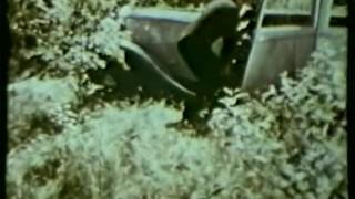 European Peepshow Loops 200 1970s - Scene 4 Small sucking
