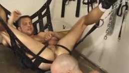 Flogged and Inspected