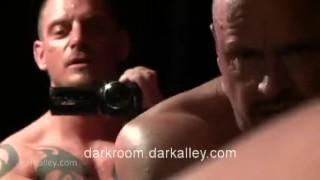 Trap venus asshole darkroom.darkalley.com muscle