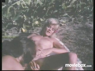 Vacation tan sex ginger lynn, scene 3 orgy fetish public pornstar vintage ginger lynn