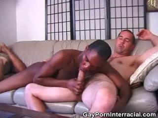 Sucking Cock Interracial