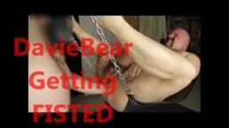 DavieBear - taking a bears fist