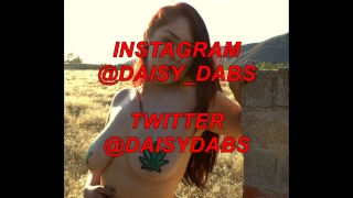 Daisy Dabs gets it from behind and on her face