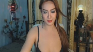 Cam on gorgeous asian shemale transexual webcam
