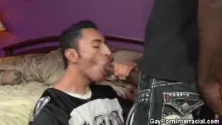 Thuggin' interracial sucking cock sucking cock