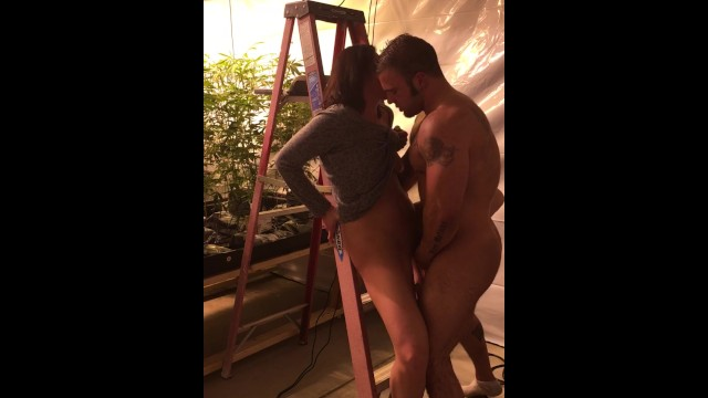 Sexy couple fuck! Blowjob, pussy eating, and cumshot! Part 1