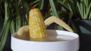 hot steamy hardcore corn