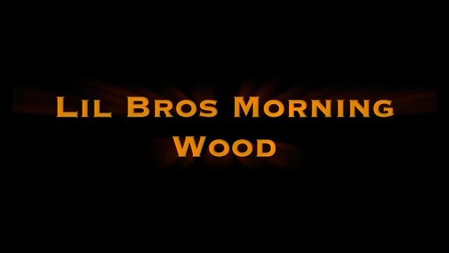 LittleStepBros Morning Wood Teaser