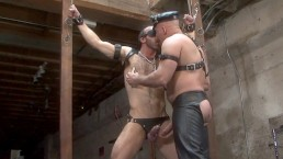 Hung Leather Muscle Daddies Play Hard and Fuck