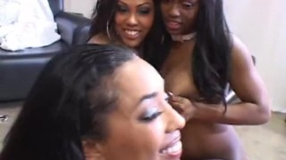 Biggest Blackest Orgy Part1  fellatio big cock bbc black bj nice tits cock sucking cumshot pussy pounding dick sucking blow job orgasm oral pussy fucking perky tits group