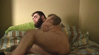 more barebacking Bear kissing