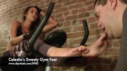 Celestia's Sweaty Gym Feet - www.clips4sale.com/8983/15757048