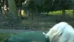 Welsh blonde nude Loz Lorrimars public masturbation and wild outdoor flashi