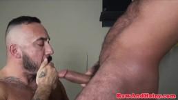 Muscular bears breeding and cocksucking