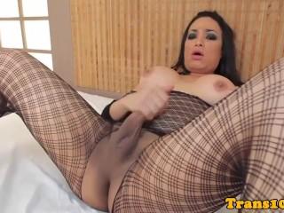 Video thumbnail tagged : trans500trannysololatinaanalplaydildofishnethighheelsbrazilianbeautymasturbationtgirltstranssexual