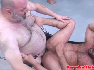 Cock gay hairy male