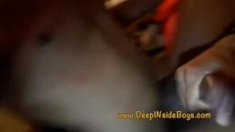 DIB Breedig Sessions: 2 loads DeepINside SJB