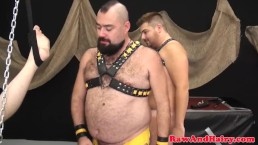 Cub barebacks cocksucking bear and cums