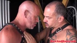 Jizzing bears barebacking mature and cumshot gay