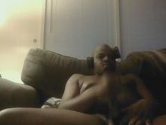 black bear top