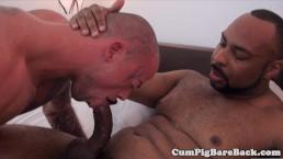 Black bear raw pounding white mature butt