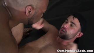 DILF bear pounded by unsaddled BBC after bj Doggy interracial