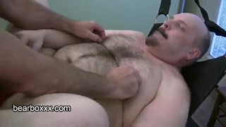Secret vol  vault bearboxxx cocks