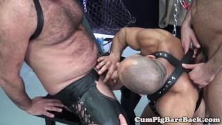 Cum ass assfucks suspended before mature bear anal jerking