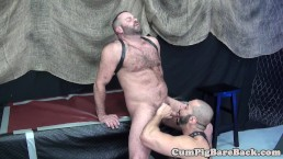 Mature bear assfucks suspended ass before cum