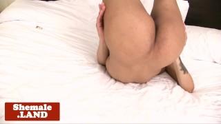 Hard cock tugging tgirl stockinged her ebony tattoo ebony
