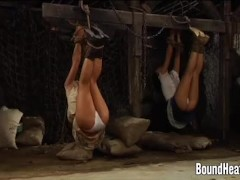 Slave Huntress II: New Girl In Bondage