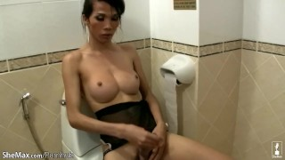 Big breasted ladyboys wanks their long ladysticks in toilet  jerk off point of view big tits lingerie thai tranny hd ladyboy blowjob bikini pov handjob 3some ladyboyplayer monster cock