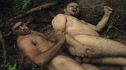 Gorillas in sex action - fat old men fuck in the amazonas