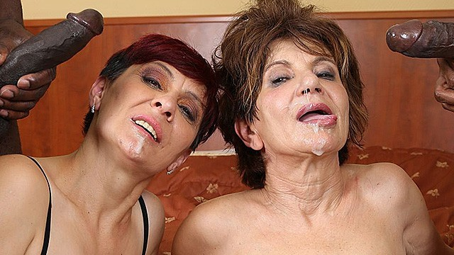 Grannys gaging on big cocks Grannies hardcore fucked interracial porn with old women loving black cocks