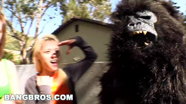 Women fucking apes monkeys Bangbros - rebecca blue, tara lynn fox and katie summers monkey around