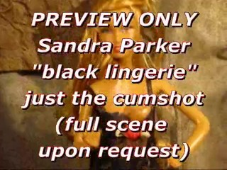 PREVIEW: Sandra Parker (black lingerie) blasted